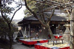 Oishichaya1