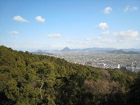 Miharashi
