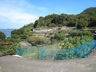 Toudaimichi