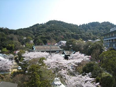 Ooshibaienbo