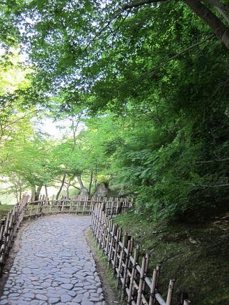 Minaminiwa