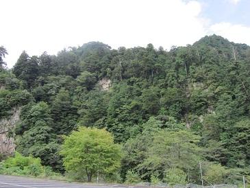 Yamakai