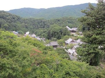Hatuseoguni1