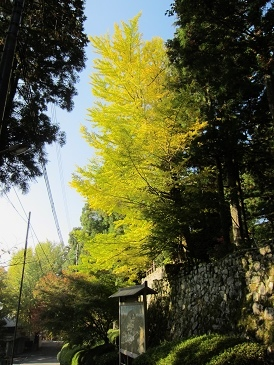 Kiyomizu4_2
