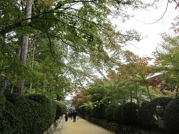 Jyabaramichi