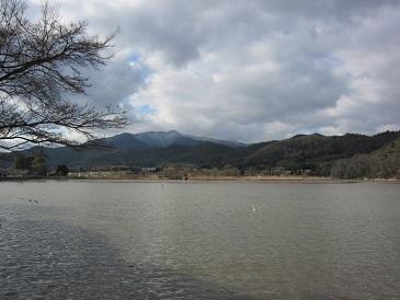 Hirosawa2