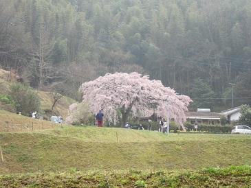 Nishibun1