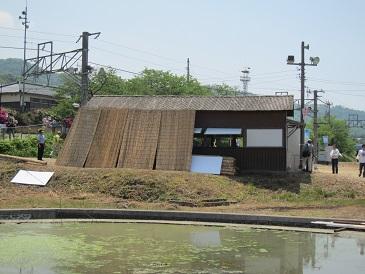 Tsushimanomiyasta3