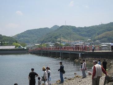 Tsushimasan6