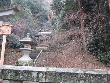 Michizanesan