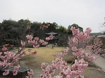 Kannshuji2