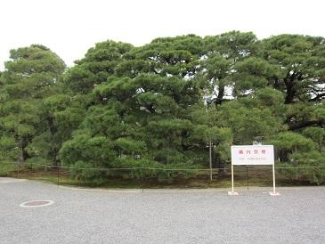 Oouchiyama1